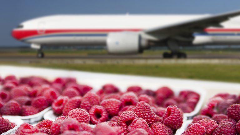 Нетрайните продукти оказват все по-голям натиск на пазара на въздушни товари.